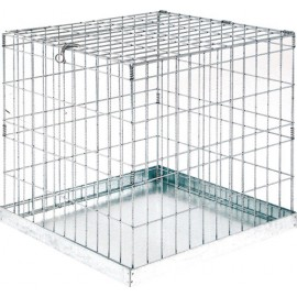 cage-exposition-1-case-60x60x60-cm