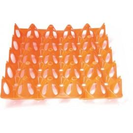 alveole 20 oeufs dinde plastique