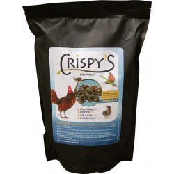 insectes seches 1 kg