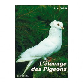 elevage-des-pigeons-bornemann