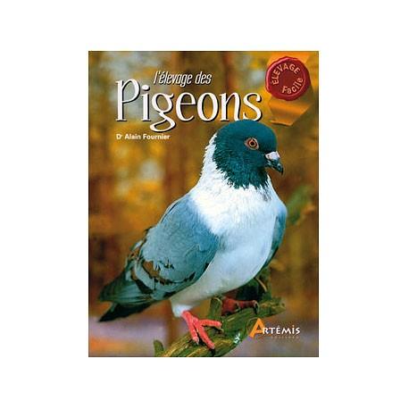 elevage-des-pigeons-artemis