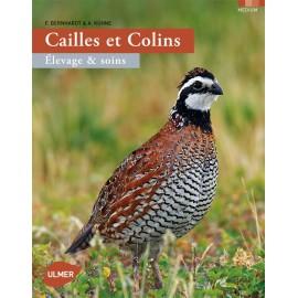 CAILLES ET COLINS - ULMER