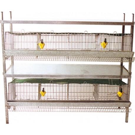 cage 80 cailles pondeuses 2 etages 100x46x90cm