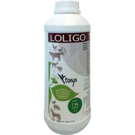 loligo tonyx 1 l