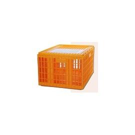 CAGEOT 1 PORTE SPECIAL DINDES 77X57X42 CM