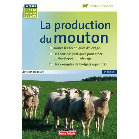 la production du mouton