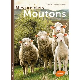 MES PREMIERS MOUTONS - ULMER