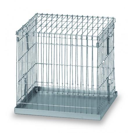 cage exposition 1 case 42 x 42 x 40 cm