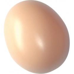 œuf poule plastique creux beige