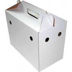 carton de transport avec poignee lot de 5