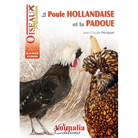 la poule hollandaise et la padoue - animalia
