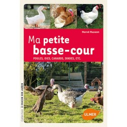 MA PETITE BASSE-COUR - ULMER