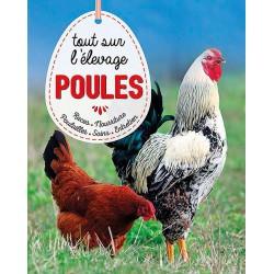 poules tout savoir sur l'elevage - artemis