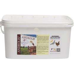 androlis 250 poules