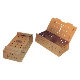 caisse-50-poussins-carton-50x26x125cm